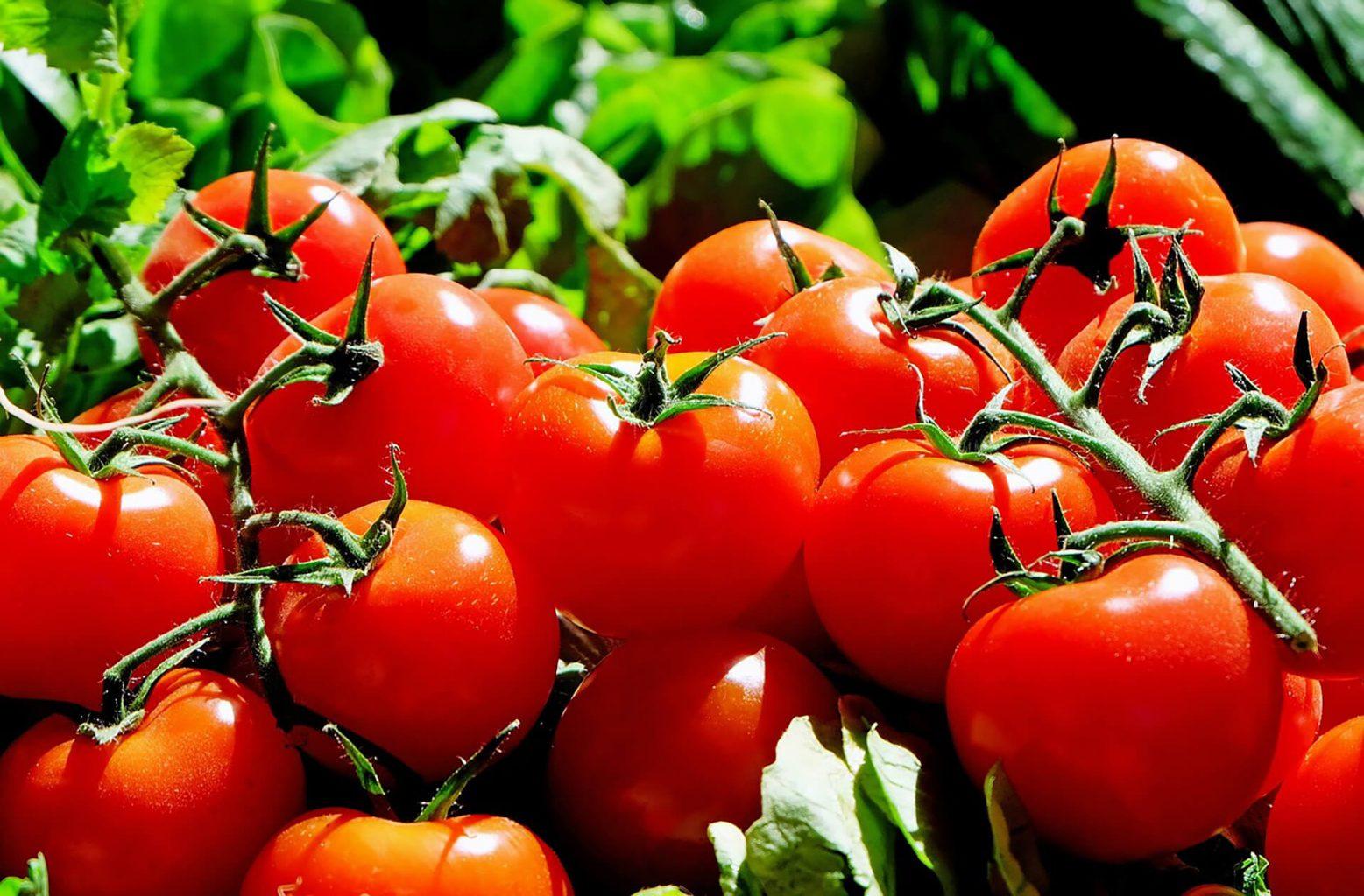 Geroosterde bloemkool met tomatensalsa